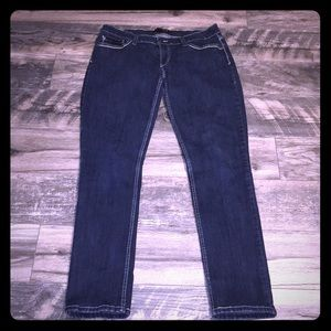 Levi Strauss & Co. Blue Denim Jeans.